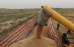 Iraq helps farmers in liberated areas sell crops