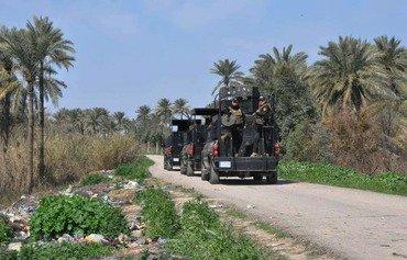 القوات العراقية تطهر بساتين ديالى من فلول داعش